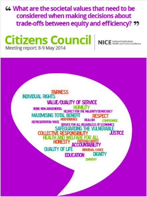 NICE-Citizens-Council-2