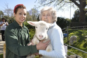 Lymington care homes welcome all creatures great and small