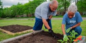Elderly-couple-gardening