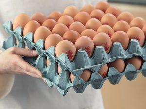 chefs-eggs