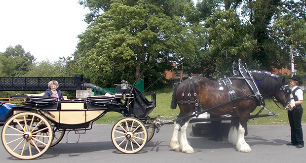 Marjorie Basford prepares for her birthday tour of Nantwich on a horse drawn carriage