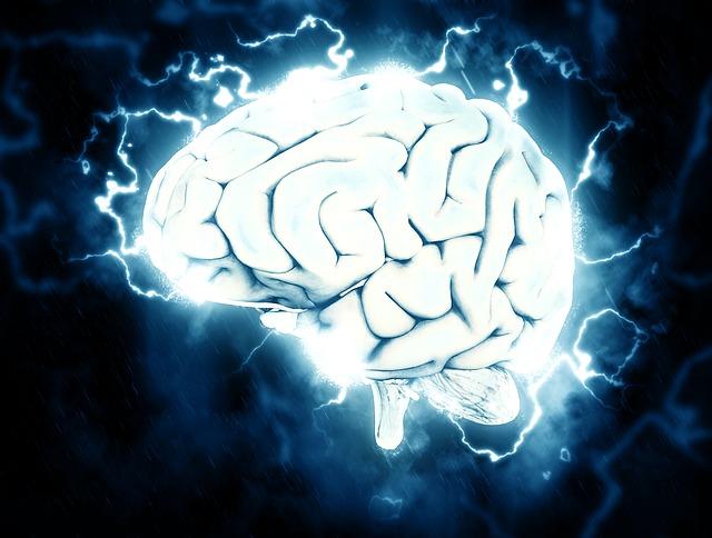 brain 1845962 640