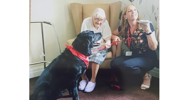Waverley PAT Dog visit