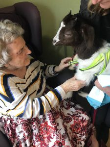 1—Aaron-Court-Animal-Therapy