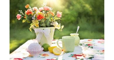 Ready Steady Garden – Lilian Faithfull Care In Bloom